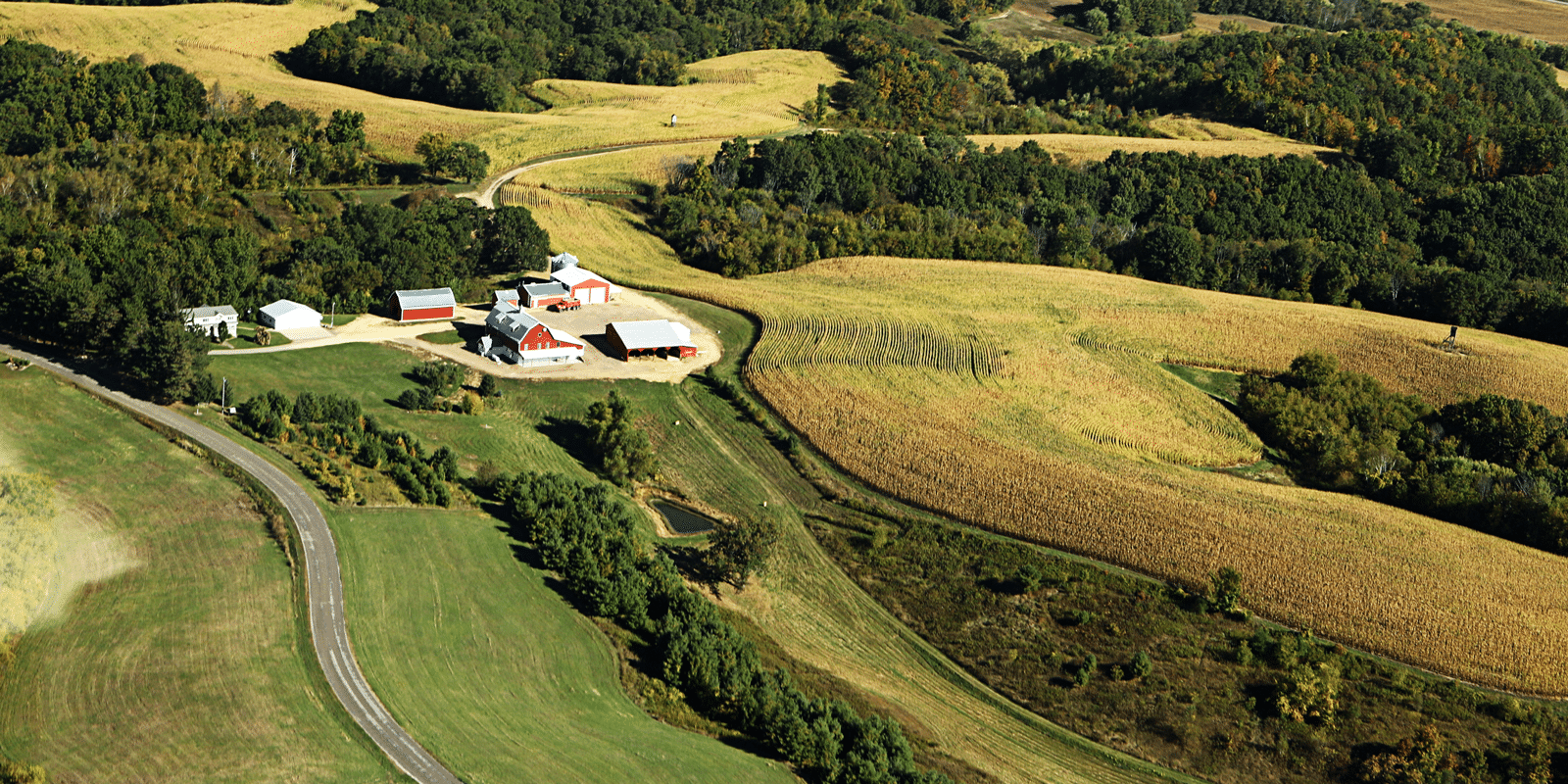 Aerial of photograph of crops, woodland, and farm buildings